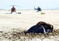 H�licopt�re tr�s basse altitude