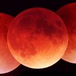 Quand aura lieu la prochaine eclipse lunaire ?