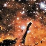 NGC6823: Amas ouvert sculpteur d'étoiles
