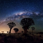 Pluie d'étoiles filantes des Perséides dans l'hémisphère sud