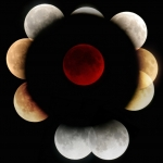 Eclipses de Lune