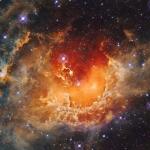 Formation d'étoiles dans la nébuleuse du Têtard