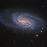 NGC 2903, la galaxie oubliée