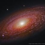 La proche et massive galaxie spirale NGC 2841