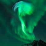 Aigle d'aurores sur la Norvège