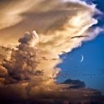 Nuages, oiseaux, Lune et Vénus