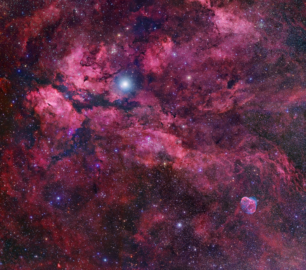 Au centre du Cygne