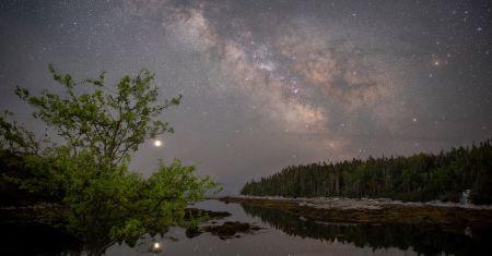 La galaxie, la planète et le pommier
