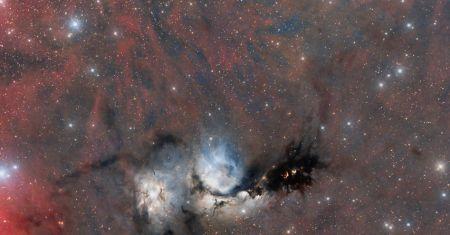 Le grand champ de M78