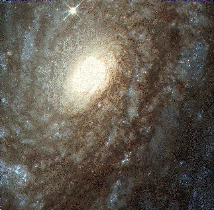 NGC4414: une galaxie spirale cotonneuse