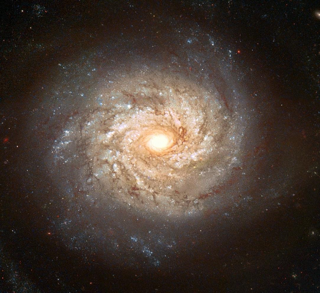 La galaxie spirale NGC3982 avant la supernova