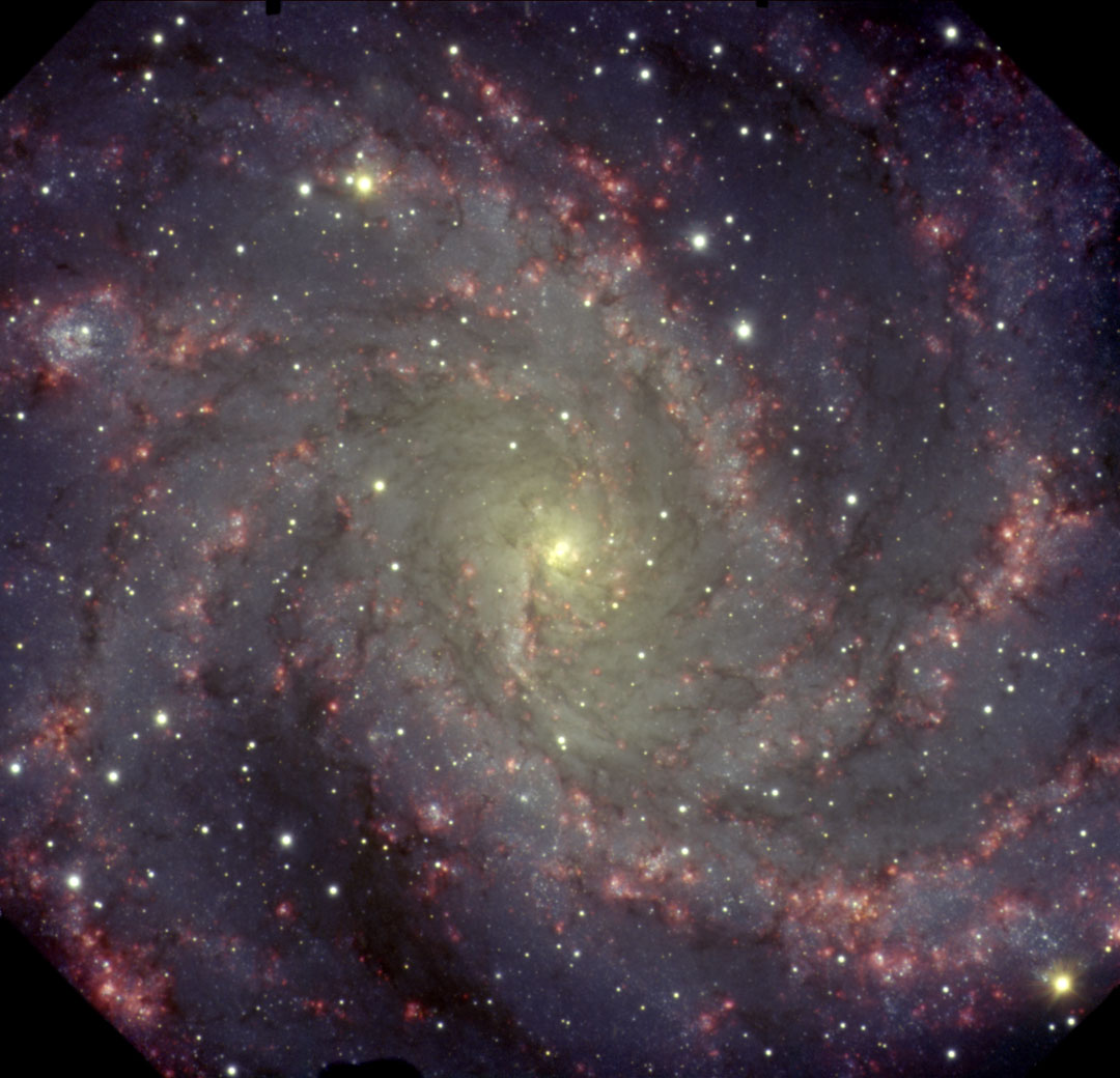 NGC 6946 : la Galaxie du Feu d\'Artifice