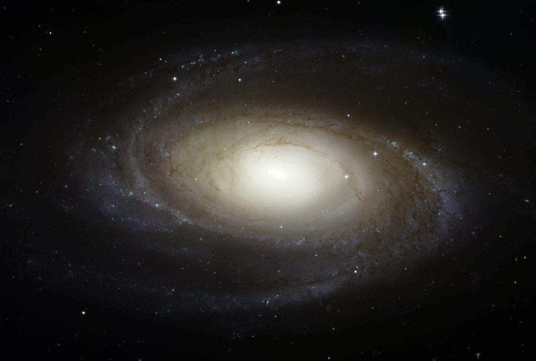 La brillante spirale M81 vue par le télescope spatial Hubble
