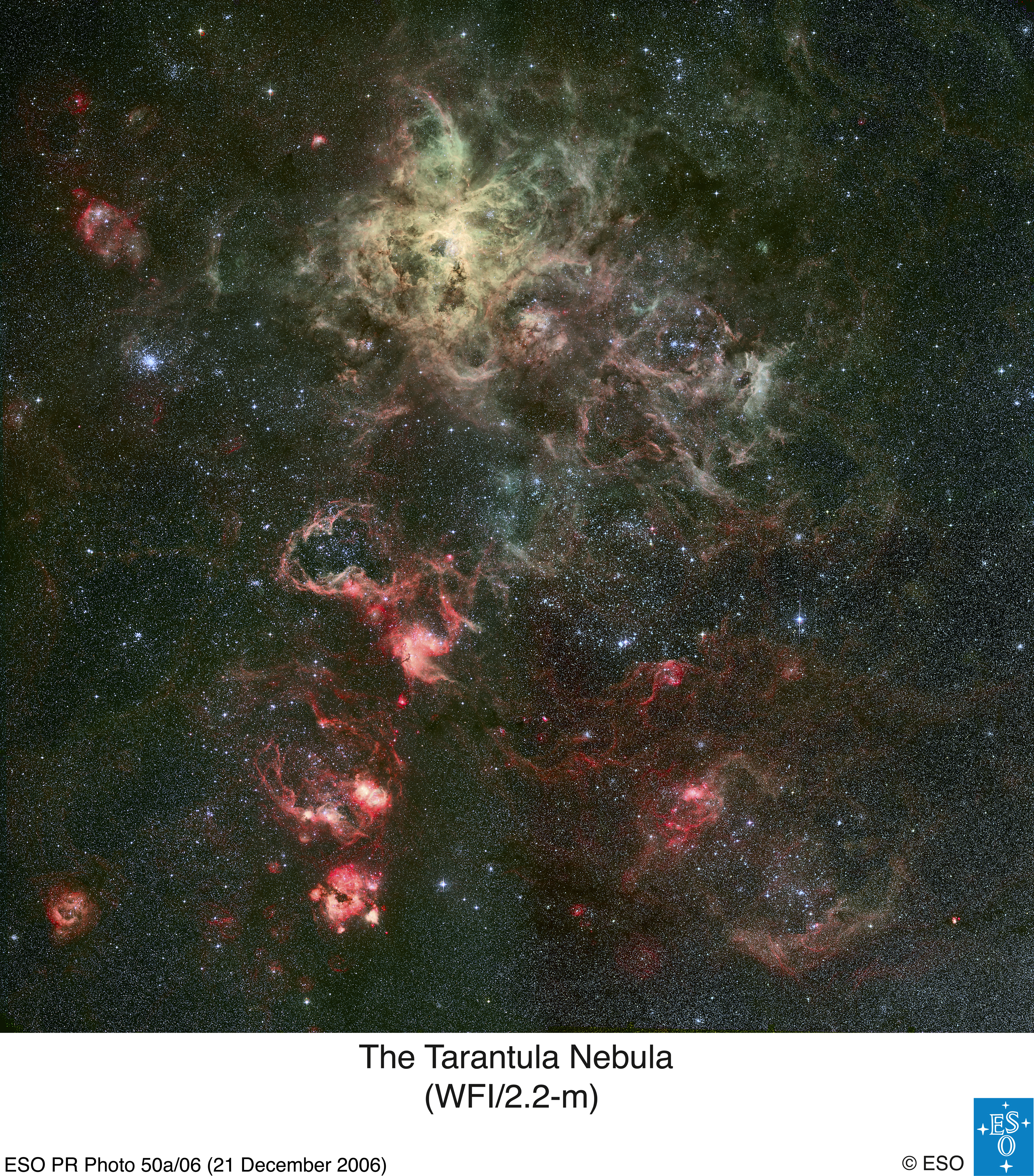 Les tentacules de la Nébuleuse de la Tarentule