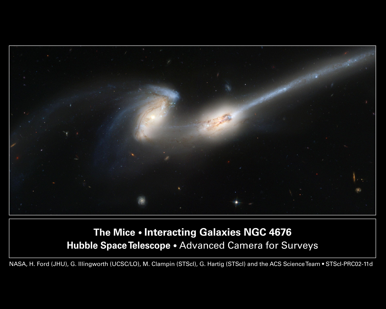 NGC 4676, quand les souris cartonnent