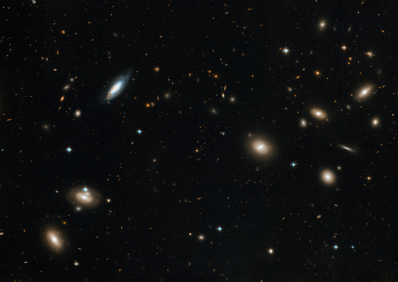 Au coeur de l\'amas de galaxies de Coma