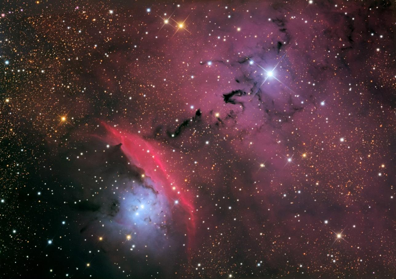 Etoiles, poussières et nébuleuses dans NGC 6559