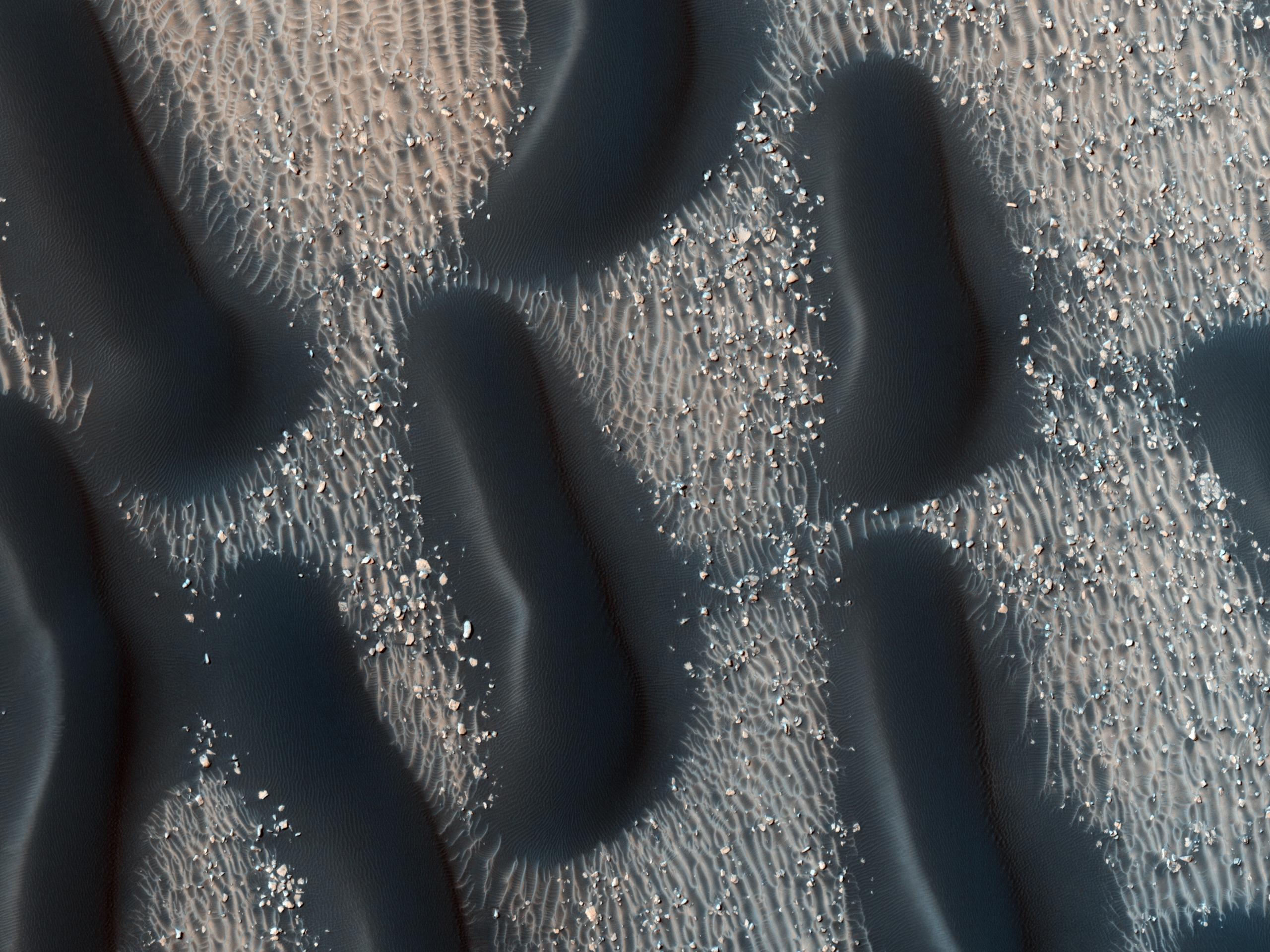 Champ de dunes sur Mars