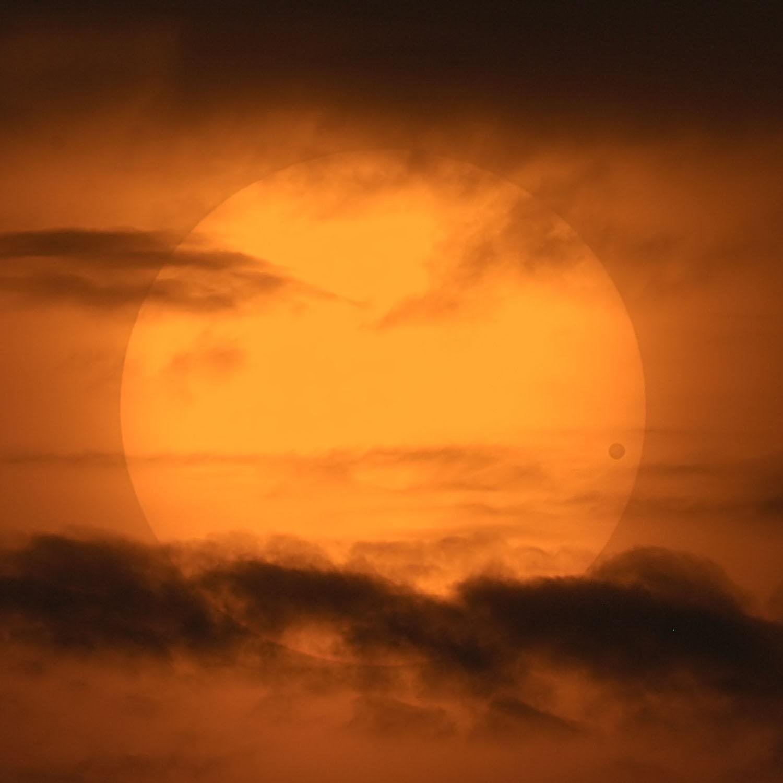 Un pittoresque transit de Vénus