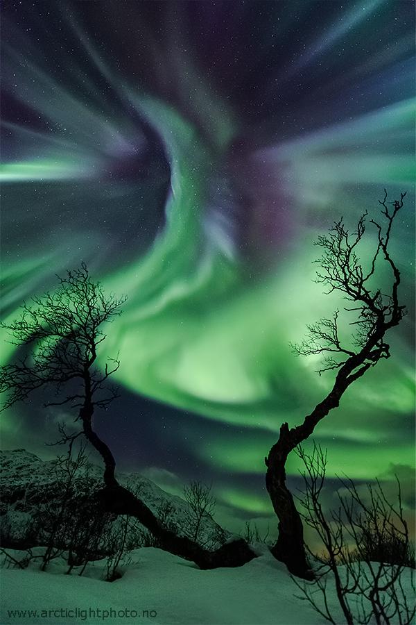 Créatures de lumière sur la Norvège