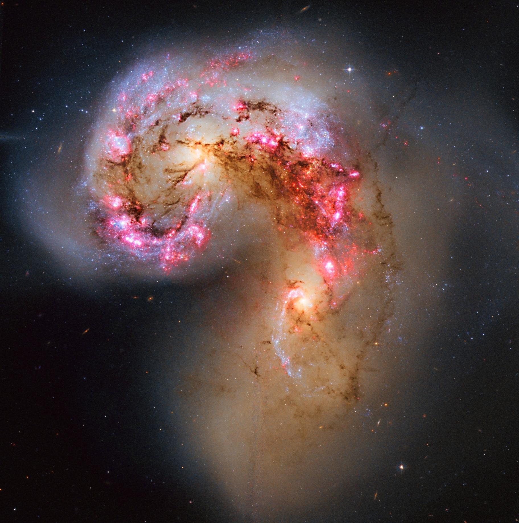 Les galaxies des Antennes en collision