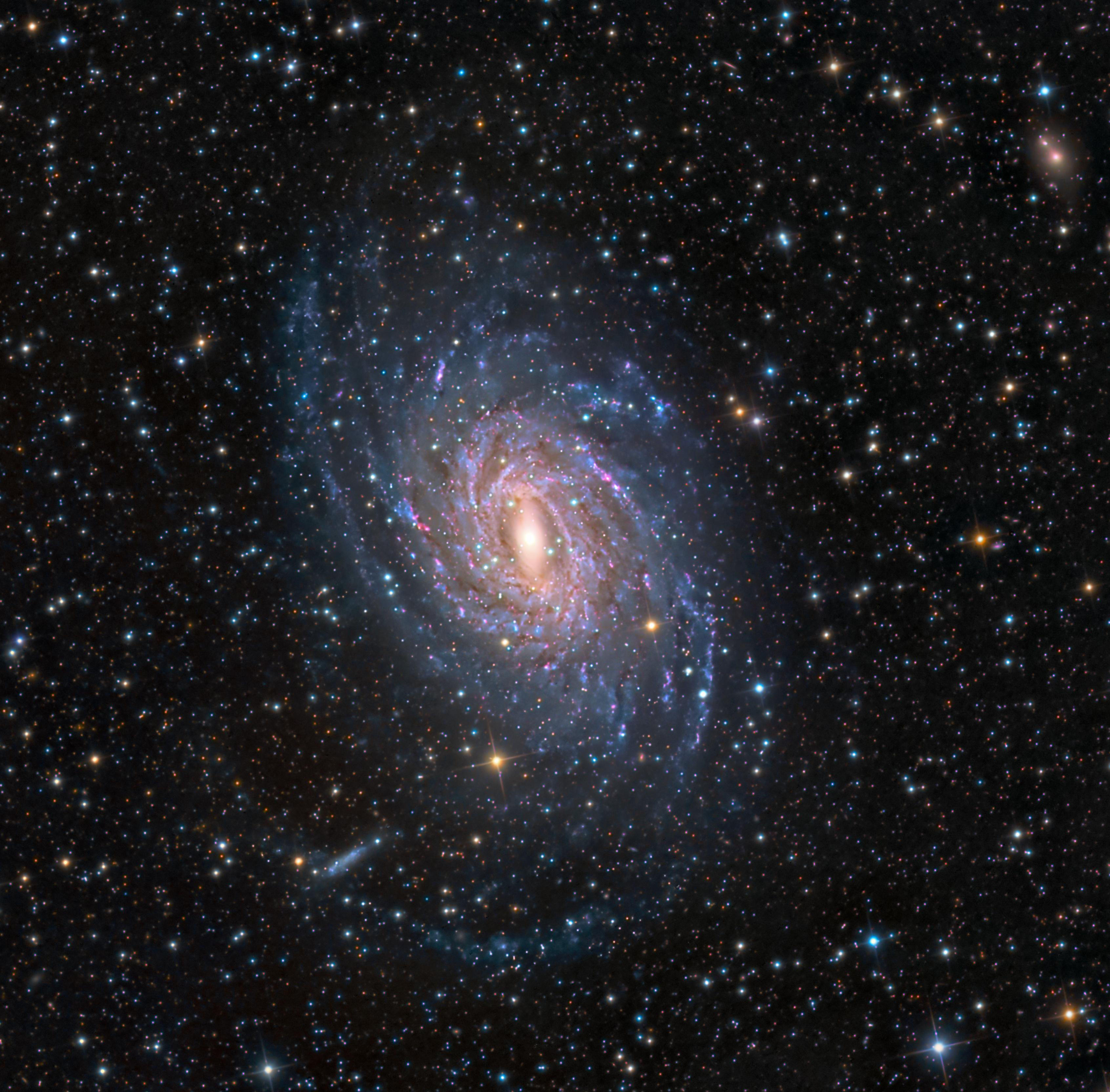 Galaxie spirale dans le Paon