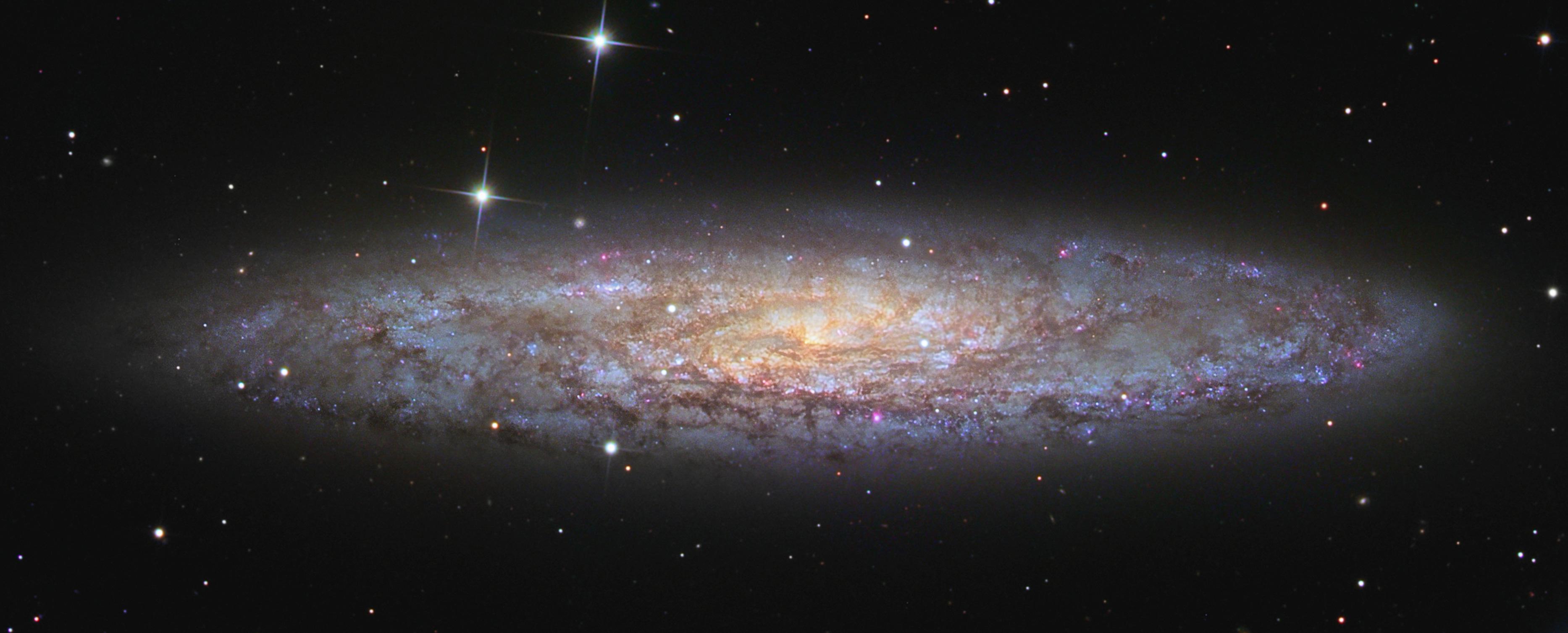 NGC 253, l\'univers-île poussiéreuse