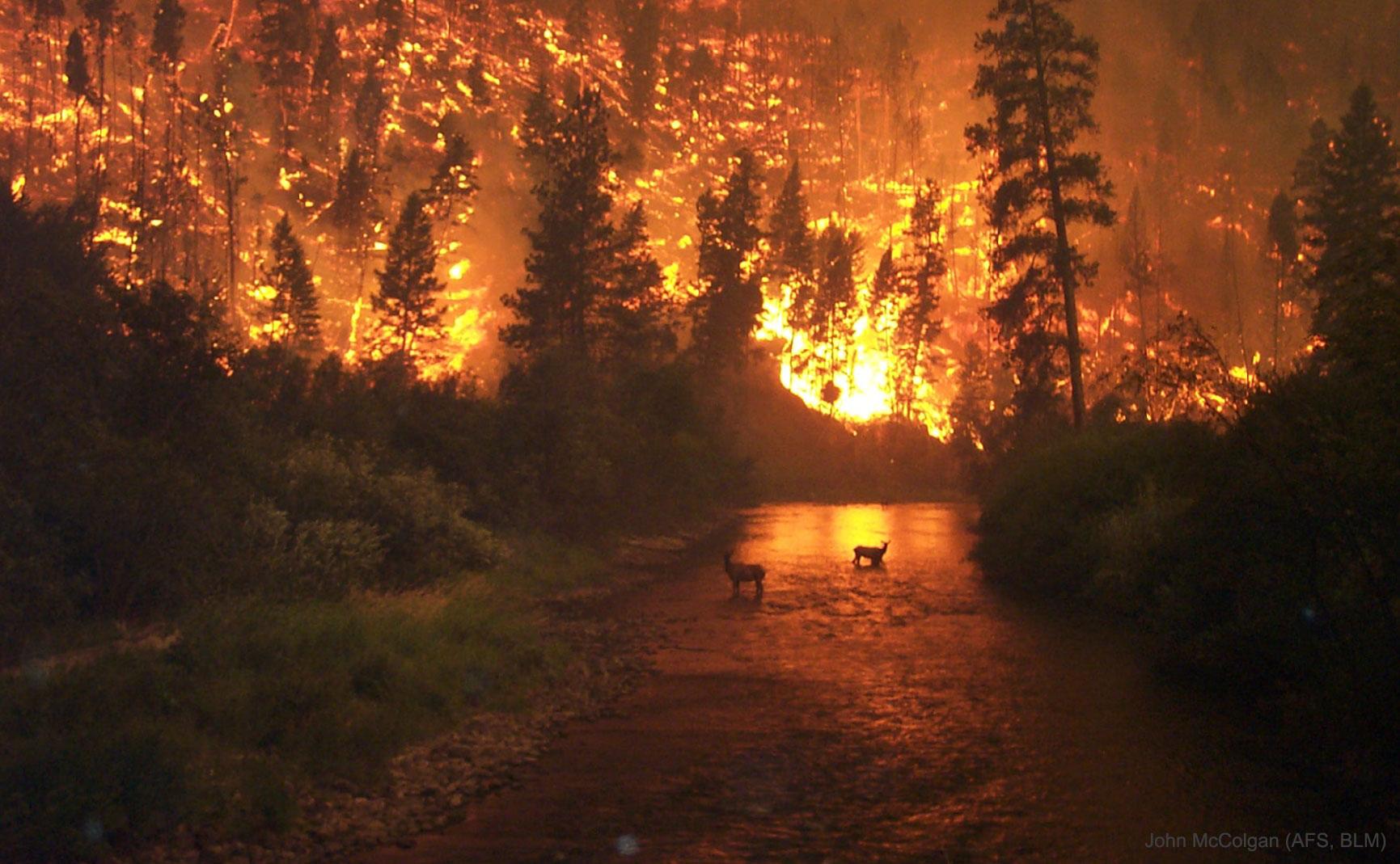 Le feu sur la Terre