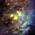 Les naines brunes du Trapèze d'Orion