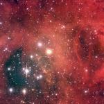 NGC2244: un amas d'étoiles dans la Nébuleuse de la Rosette