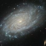 NGC3370: une vue plus fine