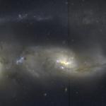 Arp81: 100 millions d'années après