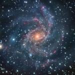 NGC 6946 en face