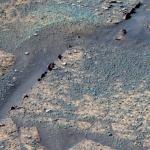 Nageoires dorsales dans le cratère Endurance
