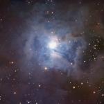 NGC 7023 : La Nébuleuse de l'Iris