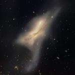 Les galaxies en collision de NGC520