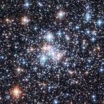 L'amas ouvert NGC 290, une Boîte à Bijoux Stellaire -