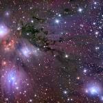 Etoiles, poussières et nébuleuses dans NGC 2170