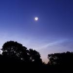 Brillances nocturnes