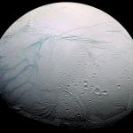 Rayures de Tigre récentes sur Encelade