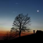 Lune et planètes au petit matin