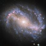 NGC 6217, galaxie spirale barrée