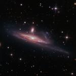 Repas de fauve galactique sur les rives du Grand Fleuve