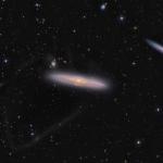 Les courants d'étoiles de NGC 4216