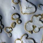 Fosses de glace sèche sur Mars