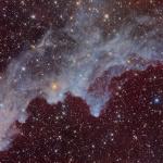 IC 2118, la nébuleuse de la Tête de Sorcière