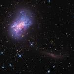 Le courant d'étoiles d'une galaxie naine