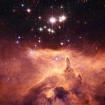 Une cathédrale d'étoiles massives