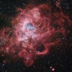 NGC 604, maternité stellaire géante