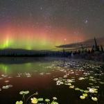 Aurores boréales sur l'Alaska